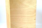 18-018 Urn Asbus Inzet BM 2